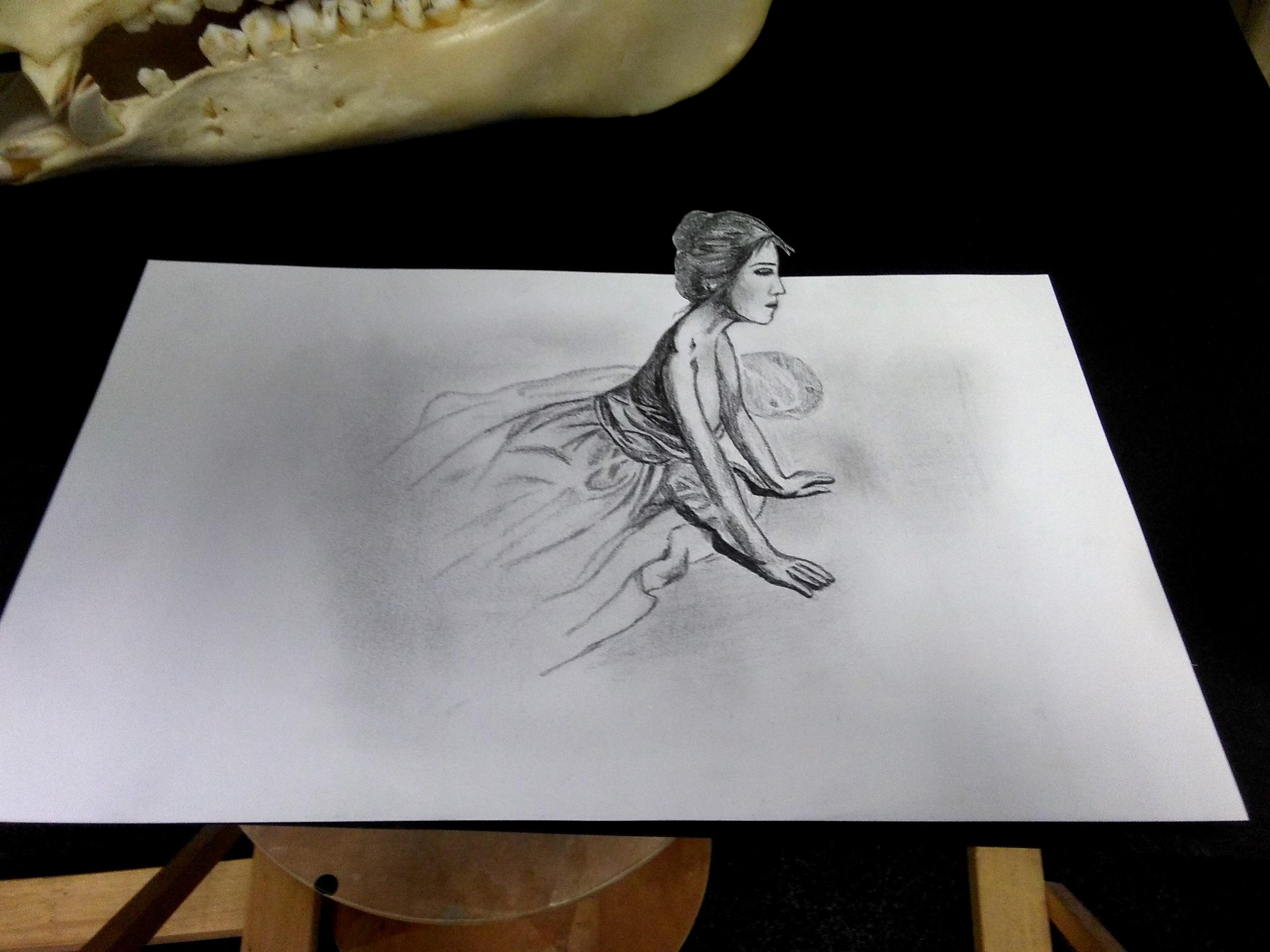 Zaklady 3d Kresby Atelier Montmartre